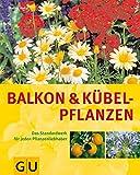 Balkon- und Kübelpflanzen: Das Standardwerk für jeden Pflanzenliebhaber bei Amazon kaufen