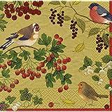Diseño de pájaros de invierno lEntertaining dorado de papel servilleta 20 juego de protectores de 33 cm cuadrado
