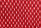 gepunkteter Baumwollstoff rot-weiss (10 cm)