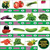 Only For Organic Combo of Fifteen Summer Kitchen Garden Hybrid Seeds ,15 Pieces