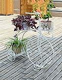 Brisk-Racks de fleurs- Fer à repasser Style Fleur Racks Bicyclette Fleur Racks Intérieur Balcon Salon Flower Pot Rack - Décorations d'intérieur (couleur : 3)