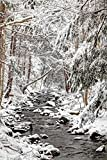 Fine Art Print – Stream in Winter, Nova Scotia, Kanada von Bentley Global Arts Gruppe, Papier, multi, 23 x 36
