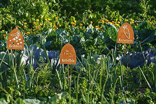 LB H&F 6 Stück Topfstecker Gemüsestecker Roststecker Set - 38 cm Gross - Pflanzstecker für Stilvolles Beschriften Ihrer Gemüse Sorten - Tomate Karotte Gurken etc (Gemüse)