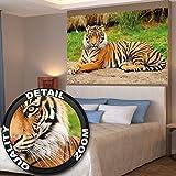 Poster majestätischer Tiger Wandbild Dekoration Panthera Tigris Raubkatze Wildkatze Wildtiere Großkatze Tierbilder | Wandposter Fotoposter Wanddeko Bild Wandgestaltung by GREAT ART (140 x 100 cm)