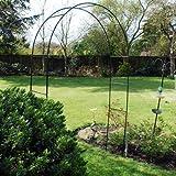 KINGFISHER - Arco para flores (acero, altura de 2,4 m, ideal para plantas trepadoras)
