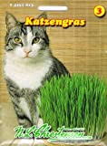 Pet Products - Katzengras Saatmischung