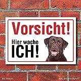 Vorsicht 'Hier wache ich', Labrador, Hund, Schild, Hinweis, 3 mm Alu-Verbund Motiv 1 300 x 200 mm