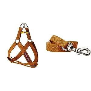 PetsLike Regular Harness and Leash, Gold, Small