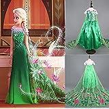 Disfraz de la Princesa ELSA ANNA de Frozen Vestido Niña con VARITA Y CORONA (Talla 100 (3-4 años))