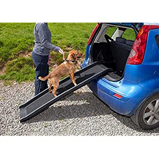 Easipet Pet Ramp for Dogs in Plastic, Folding Lightweight and Strong (Black) 22