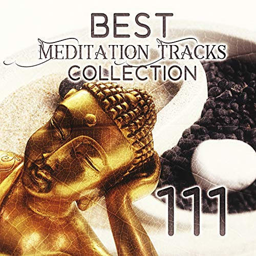 111 Best Meditation Tracks Collection: Oasis Sounds of Nature with Native American Flute for Deep Relaxation, Japanese Zen Garden Music, Pure Massage Music, Healing Spa, Serenity Sleep Songs - Native Garden Collection