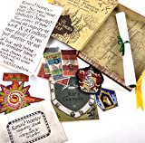 Harry Potter Boite d'Artefact Ron Weasley Noble collection
