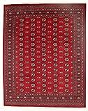 Nain Trading Pakistan Buchara 2ply 309x246 Orientteppich Teppich Rost/Lila Handgeknüpft Pakistan