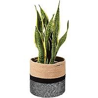 Queta Panier de Rangement tissé Corde de Coton Panier Pot de Plantation d'intérieur avec Poignées, Décoration Intérieure…