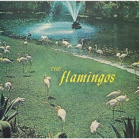 Flamingos by FLAMINGOS (2015-08-26)