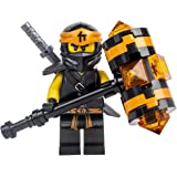 Lego Ninjago Cole Secrets of the Forbidden Spinjitzu