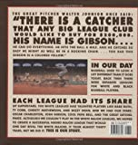 Image de We Are the Ship: The Story of Negro League Baseball