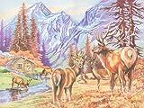 Reeves Malen nach Zahlen Buntstifte Hirsche