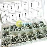 dapetz® 550Stück Tabelle Metall Metrisches selbstschneidenden Schraube Sortiment Schrauben Kit