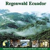 Regenwald Ecuador: Fischertukan, Jaguar, Ozelot, Waldhund - Karl Heinz Dingler