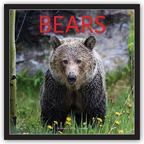 Descargar Libro Bears - Bären 2018 - 16-Monatskalender: Original BrownTrout/Wyman Publishing-Kalender de Wyman