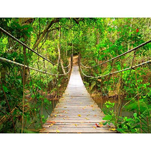 Fototapeten Brücke Wald 352 x 250 cm Vlies Wand Tapete Wohnzimmer Schlafzimmer Büro Flur Dekoration Wandbilder XXL Moderne Wanddeko - 100{be48ac9ca1c7cd4771480b7669593a8b3a256d2b96db6d5a7e6221c13dfc2482} MADE IN GERMANY - Landschaft Natur Grün Runa Tapeten 9009011b