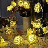 New Warm White Rose Flower LED String Decoration Light for Wedding Garden Diwali Christmas Festival Decoration