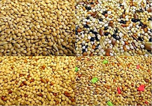 Willsbridge Mélange de Graines pour Perruches - 20 kg