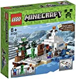 LEGO 21120 Minecraft The Snow Hideout Playset