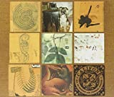 Songtexte von Califone - All My Friends Are Funeral Singers