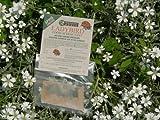 Wildlife World Ladybird Food Attractant LFA