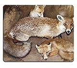 luxlady Naturkautschuk Gaming Mousepads Fox und ihre