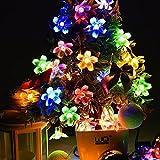 AOFENG LED Solarlichterkette Solar Lichterkette Wasserdicht Außenlichterkette Weihnachtsbeleuchtung mit 50er LEDs Beleuchtung für Hochzeit, Party, Garten 7M (Blume, Bunt)