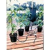 18-Automatisches Pflanzen-Bewässerungssystem, von Britten & James®-Tropfbewässerung,,,,,,,,, Stollen, einfach, sehr sicher, Isolierungs-Set, 10.5litre-Beutel, flexibel, robust, 3Stück, 46, 50, leicht zu Netzteil erforderlich, Timer, perfekt für Wintergärten und Gewächshäuser oder Fensterbänke, verwendet von professionellen und und, alles.