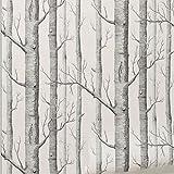 schwarze und weiße birke tapete für schlafzimmer moderne wohnzimmer tapeten - rustikalen wald wald tapete