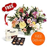 Gifts Flowers Food Best Deals - Fresh Flowers Delivered - Friendship Bouquet of Carnations and Freesias in Mixed Colours with Chocolates, Flower Food and Bonus Ebook Guide - Perfect For Birthdays, Anniversaries and Thank You Gifts