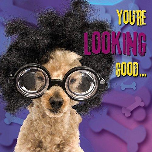 Me to You Up Close 3D Geburtstag Grußkarte Schild Cockapoo Welpe mit Nerd Brille und Perücke gut