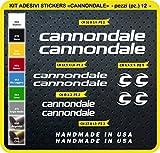 Code 0089- Cannondale Fahrrad-Aufkleber, selbstklebend, 12Sticker, Auswahl von Farben - Bianco cod. 010