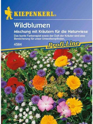 Kiepenkerl Wildblumen mit Kräutern für die Naturwiese