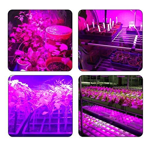 Pflanzenlampe 75W TOPLANET, Aktualisieren Reflektor Led Grow Light Panel mit IR Rot Blau Licht für Gewächshaus Hydroponik Grow Box Veg Wachstum - 8