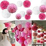 18er Set Bunt Seidenpapier Pompoms für Hochzeit, Geburtstag, Party und Weihnachten (rosa-weiß-pink)
