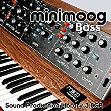 Mini Moog Bass – The King of Analog Sounds – Large Unique Original 24bit Wave/