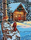FSKJSZYH Rahmenlose DIY Schneebäume Holzhaus Malerei Nach Zahlen Schneeszene Färbung Nach Zahlen...