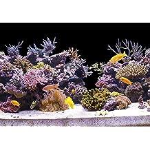 suchergebnis auf f r aquarium folie selbstklebend. Black Bedroom Furniture Sets. Home Design Ideas