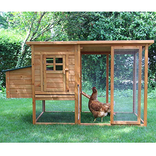 zoo-xxl Hühnerhaus Hühnerstall Hühnervoliere Elise ca. 177x75x103 cm für Hühner mit Freilauf mit Nistkasten für draußen