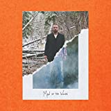 #8: Man of the Woods