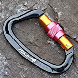 Tofern Screw Karabiner Verschlusskarabiner Sicherheitskarabiner CE 1019, Schwarz D-Form