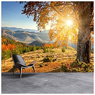 azutura Mountain Sunrise Wall Mural Autumn Forest Photo Wallpaper Living Room Home Decor available in 8 Sizes XXX-Large Digital