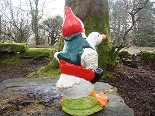 Garden Gnome ~ Andrew ~ Riding Ente