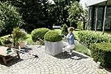 Bosch Isio Cordless Edging and Shrub Shear Set, 3.6 V, 1.5 Ah Bild 3